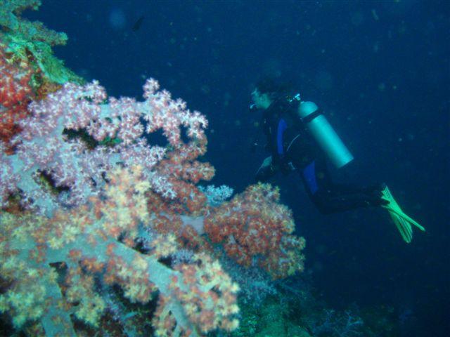 Thailand 2011 032.JPG