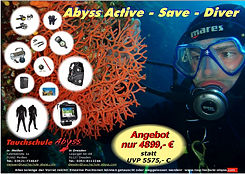 Abyss Diver.jpg