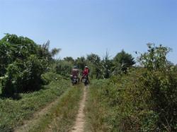 Thailand 2010-0164.JPG