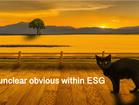 The unclear obvious within ESG