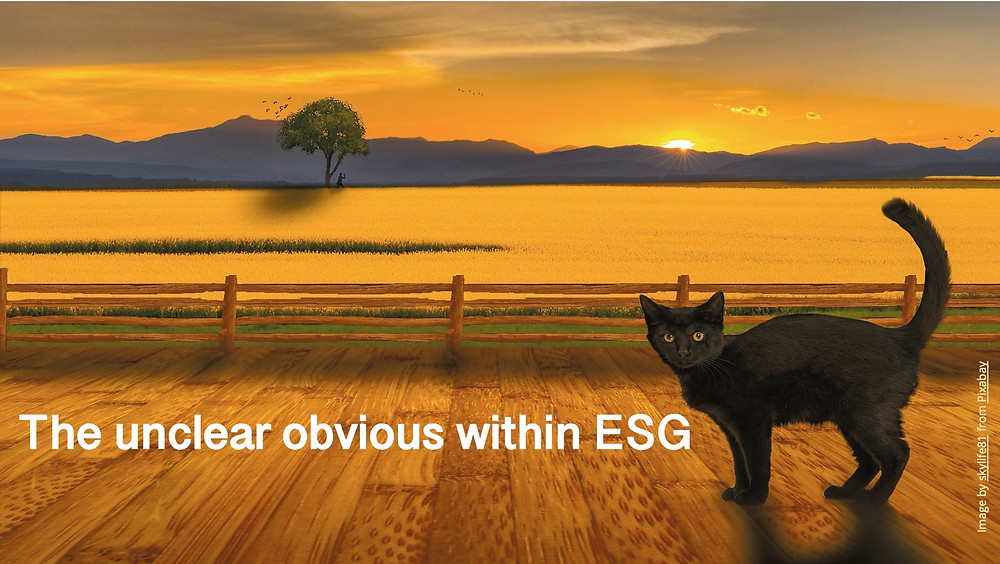 A curious cat in reference to perplexity around ESG