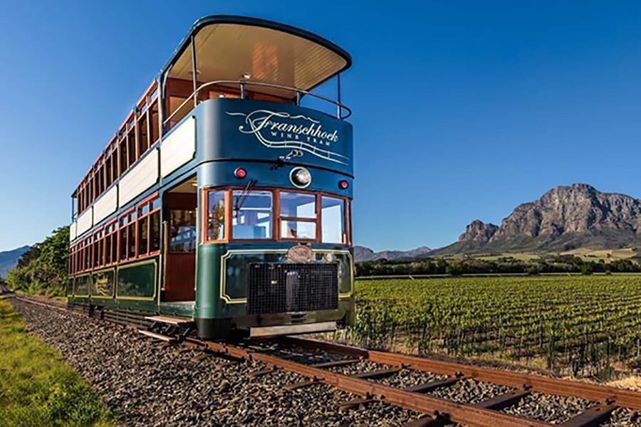 08 wine tram.jpg