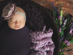 Baby Lola (1 of 1)-3