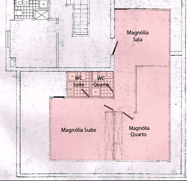 Magnólia Planta