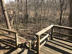 Back deck & woods
