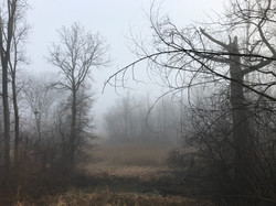 Evans Creek
