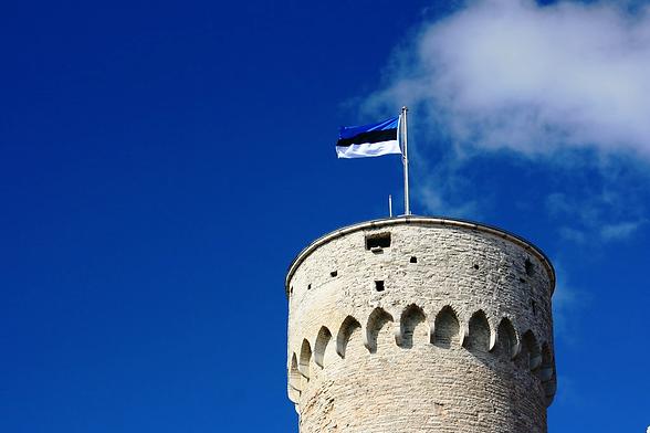Eesti lipp.png