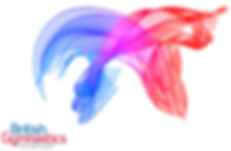 British Gym logo.jpg useable.png