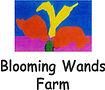 blooming wands farm.jpg