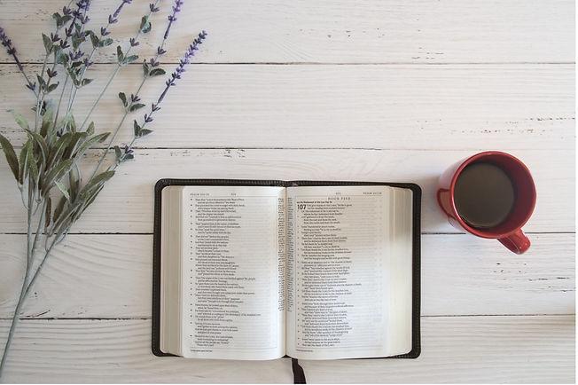 Online Women's Bible Study