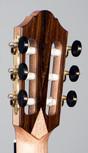 back-headstock-angle.jpg