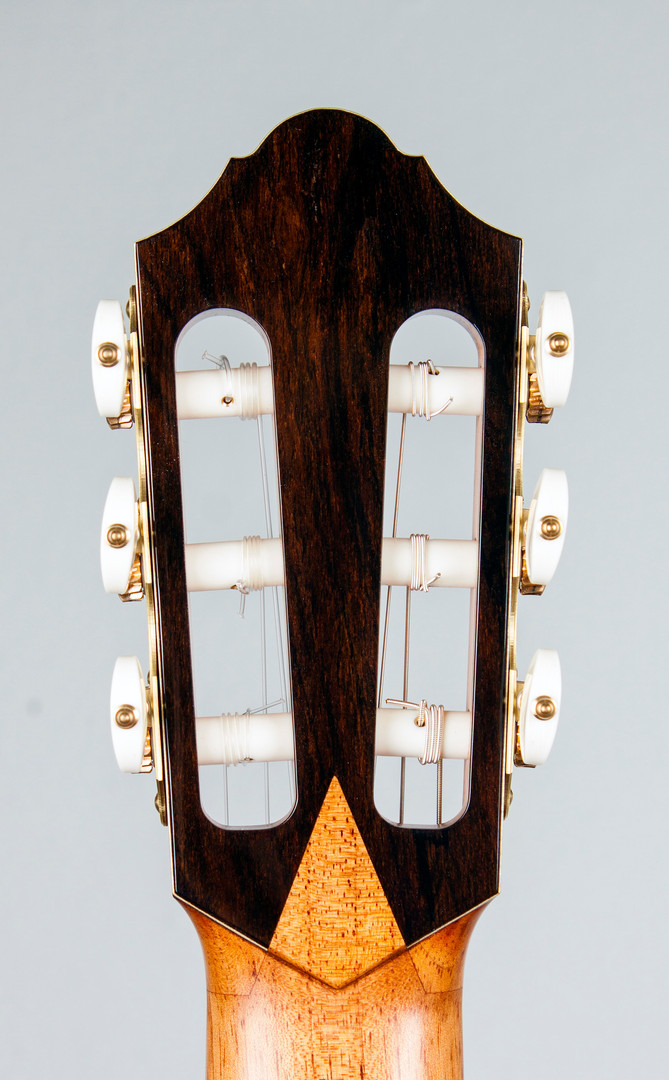 headstock rear.jpg