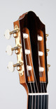 headstock front angle.jpg