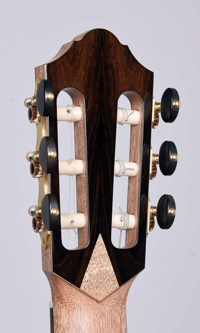headstock-back-angle.jpg