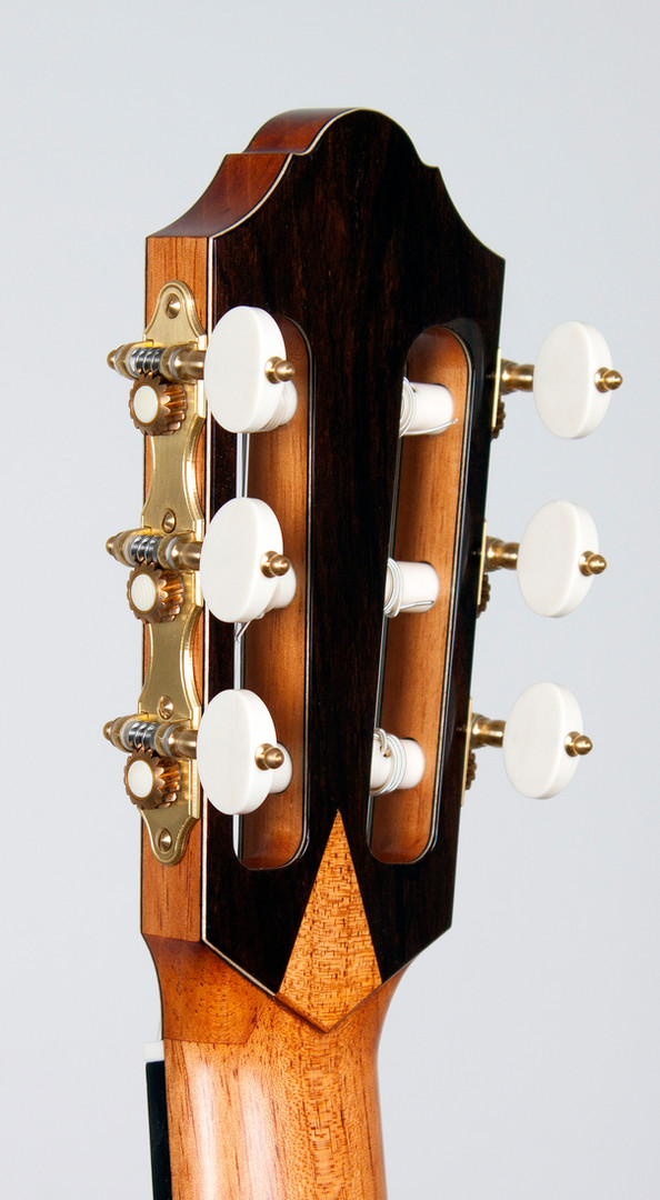 headstock back angle.jpg