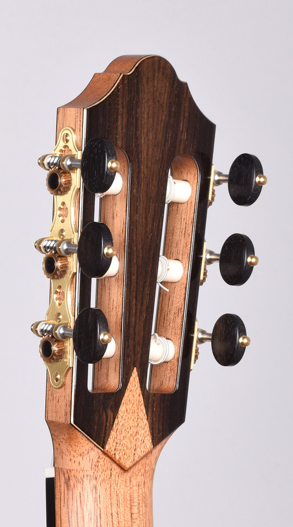 headstock back.jpg