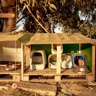 cagliari-santagilla_CV02097.jpg