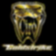 GOLD CIRO GOLDSTRIKE glstudio, gl studio, gl-studio,glstudio.net, gl studio.net, gl-studio.net,glstudionet, gl studionet, gl-studionet, goldwing, gold wing, gl1800, gl 1800, тюнинг, ремонт, голдвинг, голд винг