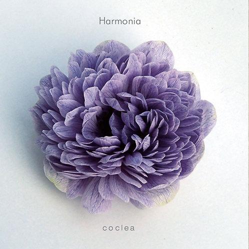 13 Chakraを調和する音楽   Harmonia