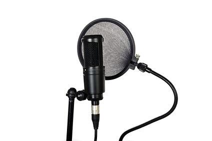 コンデンサーマイク 音声録音 ポップガード レコーディングスタジオ MA 整音