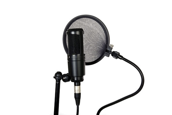 Voice Over Narration Carolina Voice Overs