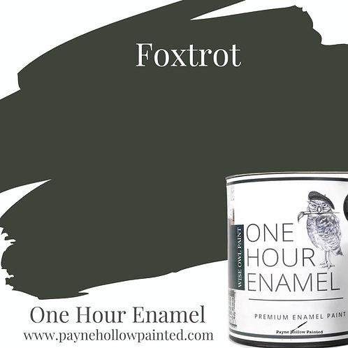 FOXTROT  One Hour Enamel