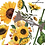 Thumbnail: SUNFLOWER AFTERNOON  - Redesign Decor Transfer