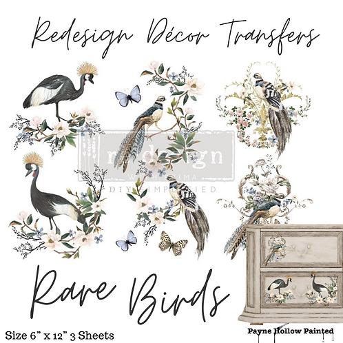 RARE BIRDS  - Redesign Decor Transfer