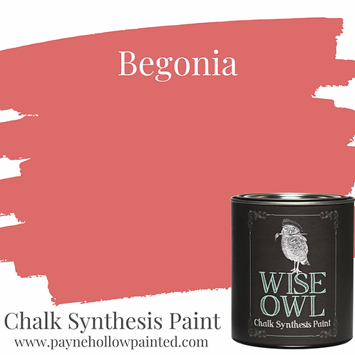 BEGONIA Chalk Synthesis Paint