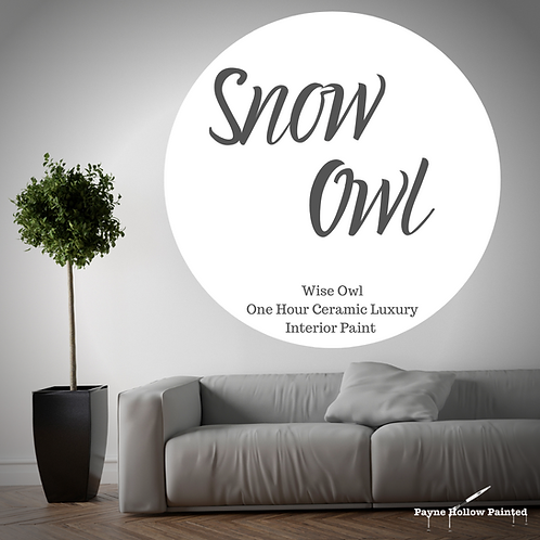 SNOW OWL One Hour Ceramic FREE SHIPPING!