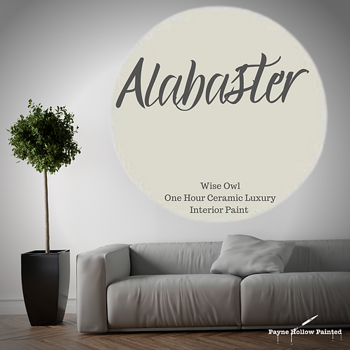 ALABASTER One Hour Ceramic FREE SHIPPING!