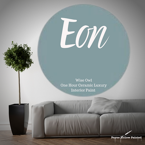 EON One Hour Ceramic FREE SHIPPING!