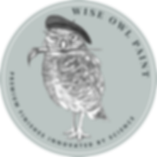 Wise_Owl_Paint_Logo_Icon_Light.png