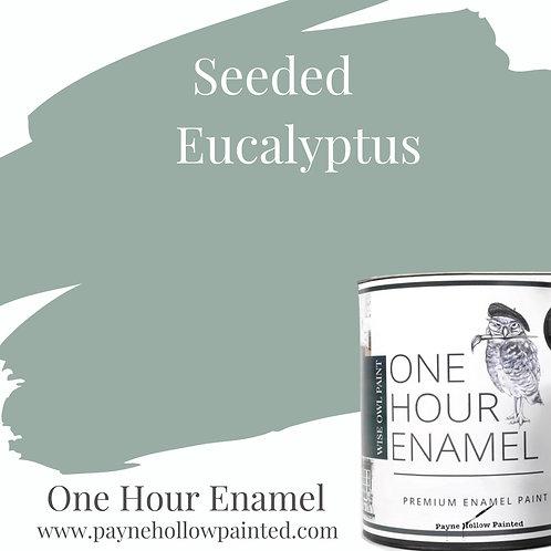 SEEDED EUCALYPTUS  One Hour Enamel