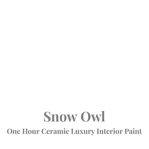 SNOW OWL One Hour Ceramic