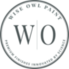Wise_Owl_Paint_Logo_Secondary_Light.png