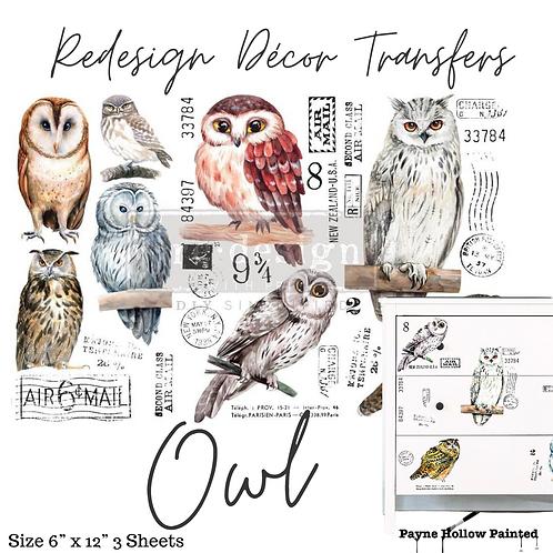 OWL   - Redesign Decor Transfer