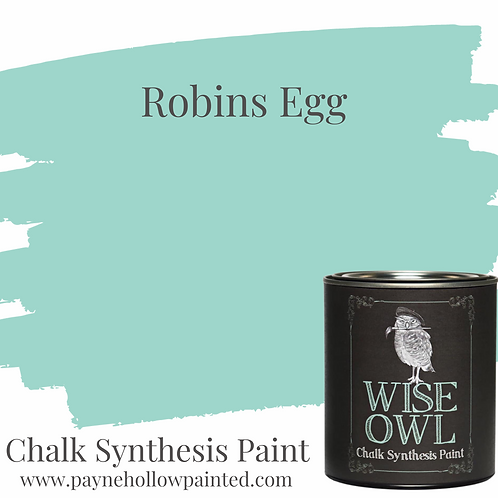 ROBBINS EGG Chalk Synthesis Paint