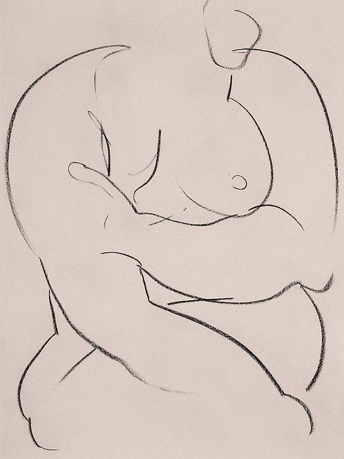 Charcoal Nude 428