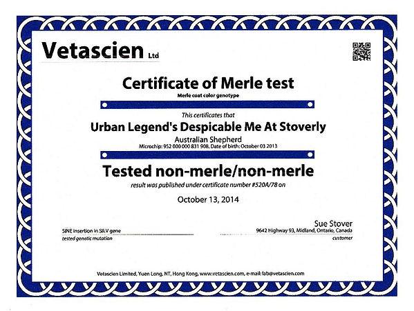 minion_merle_test2-873x657.jpg