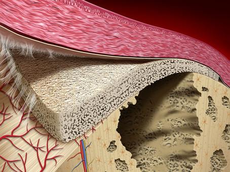 La branca montante della mandibola: il sito di prelievo ideale per rigenerare difetti ossei