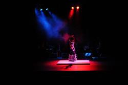 Solea 2010