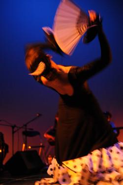 Solea 2009