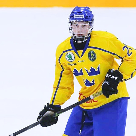 Prospect Report: Jonathan Myrenberg