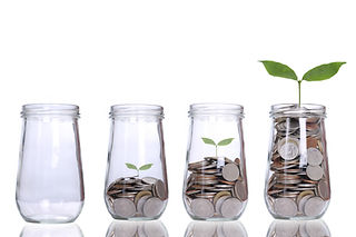 Money growing plant step with deposit co