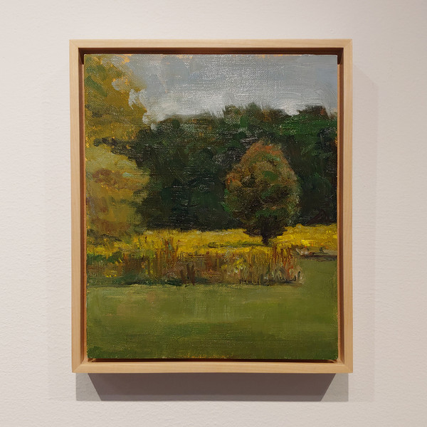 SOLD - Landscape with Goldenrod, Waveny Park, New Canaan, CT - Stacey Creem