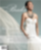 SF-Brides---fall_winter-2010-cover.png