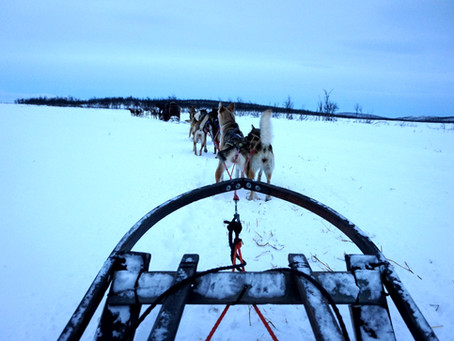 Laponie 2015 : Introduction (1/6)