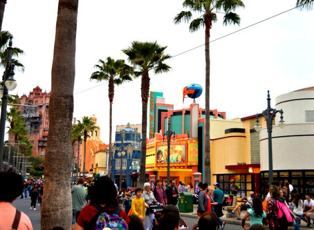 Disney's Hollywood Studios (12/14)