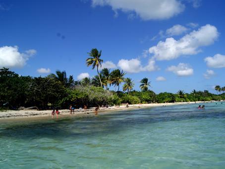 Sainte-Anne et ses plages (2/14)
